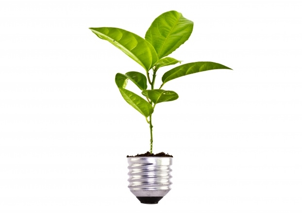 responsabilidade-ambiental